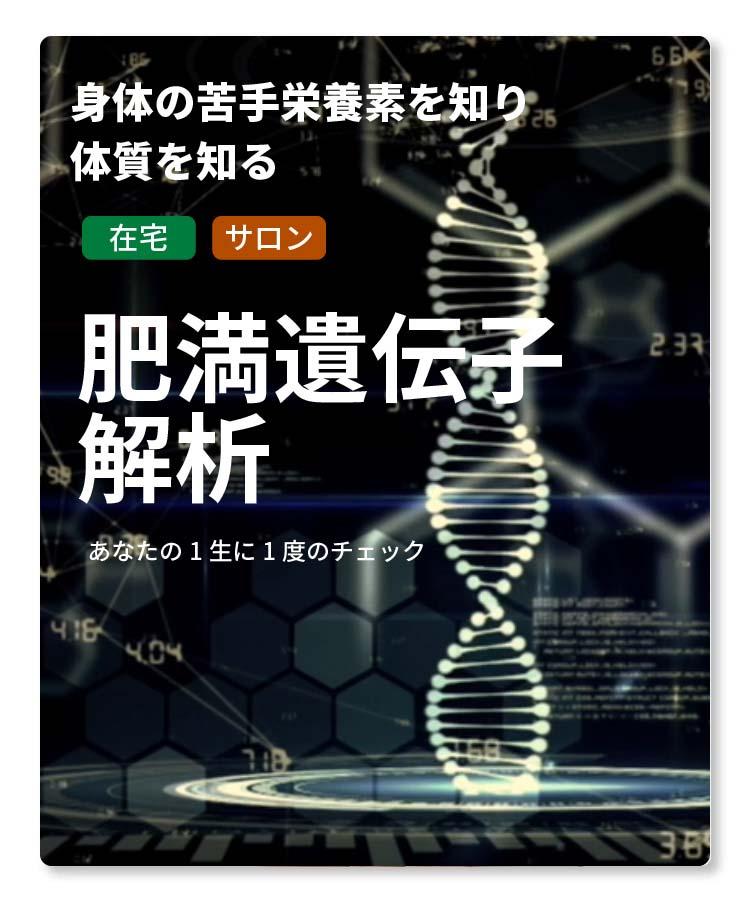 肥満遺伝子解析
